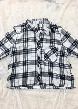 Рубашка в клетку h&m, укороченная рубашка