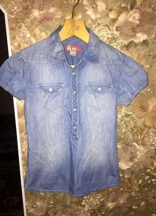 Рубашка cotton + подарок