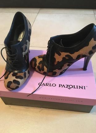 Ботинки леопард carlo pazolini