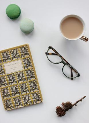 Стильные имиджевые леопардовые очки specsavers charlotte