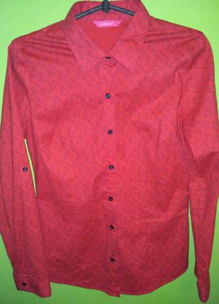 Сорочка морквяного кольору, морковная рубашка принт