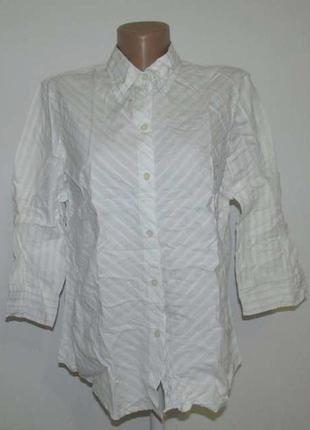 Рубашка gap, l-xl