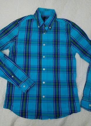 Рубашка в клетку синяя хлопок мужская