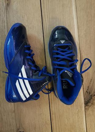 Adidas баскетбольные