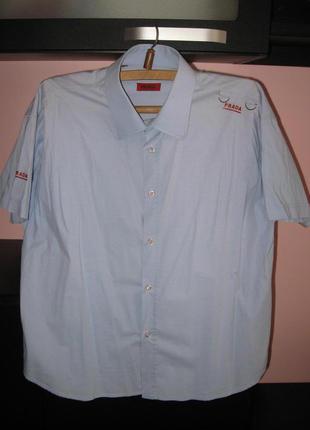 Зимняя распродажа!!! стильная бледно-голубая рубашка c надписями prada