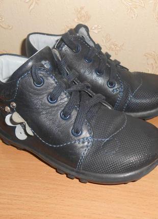 Ботинки elefanten р.21 стелька 14 см ботиночки кожаные
