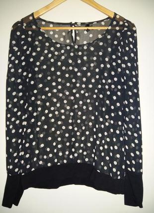 Блуза в горошек от next  размер 8-10