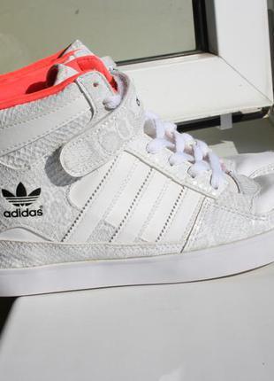 Женские кроссовки сникерсы adidas кожа 39-40 размер (оригинал ... 9989a691c8604