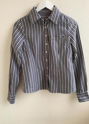 Брендовая рубашка в полоску broadway