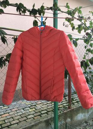 Спортивная весенняя дутая куртка\курточка карра