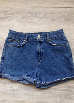 Идеальные шорты на лето jones new york