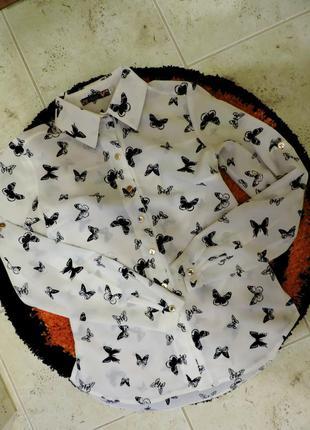 Блуза с бабочками, шифоновая