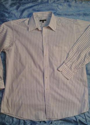 Рубашка мужская почти новая р 16-16,5 (34-35) large белая в полоску