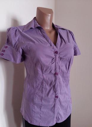 Рубашка/фиолетовая полоска