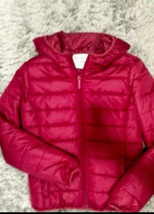 Куртка . курточка terranova