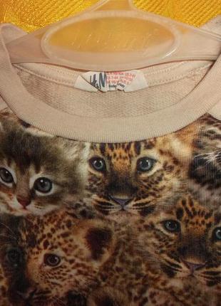 Водолазка - кошки тигрушки на 2-4 года -h&m2