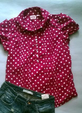 Блуза рубашка футболка в горошек