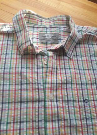 Рубашка peter gribby хлопок  р. l