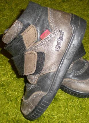 Демисезонные ботинки kickers оригинал из сша