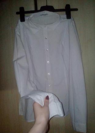 Рубашка , біла блуза/белая блузка. белая рубашка