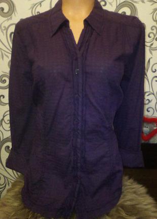 🌼 красивая, элегантная  блуза 🌼 100% котон 🌼