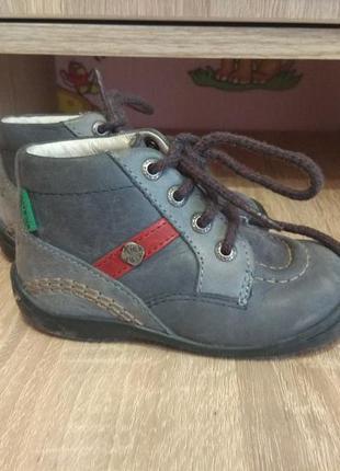 Ботиночки для мальчика kickers