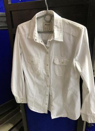 Нова сорочка 199 грн