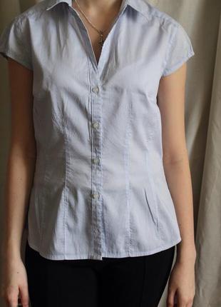 Рубашка в мелкую полоску h&m