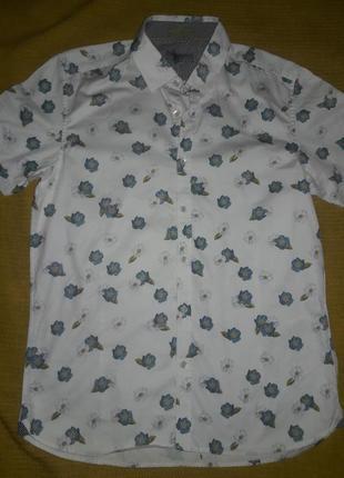 Рубашка турция  100% хлопок  р.s