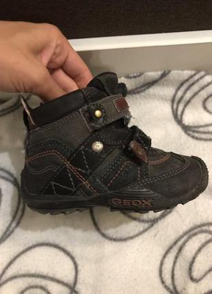 Демисезонные ботинки geox 22-23 размер
