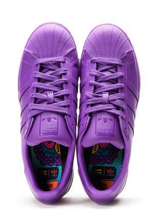 Кроссовки adidas pharrell williams superstar supercolor