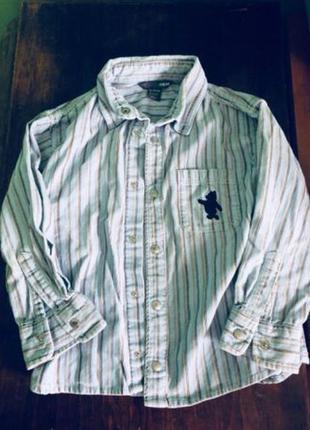 Вельветовая рубашка h&m
