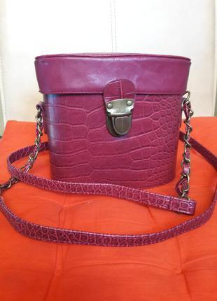 Модная сумка футляр