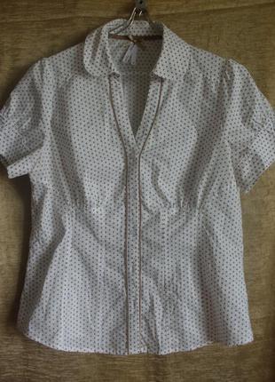 Хлопковая блузка next в мелкий горох для роскошной барышни