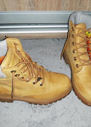 ... Классные весенние светлые ботинки из натуральной кожи panama jack,  модель timberland4 ... 19cafbb3098