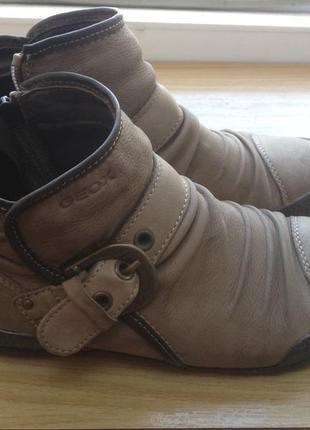 Круті черевики geox