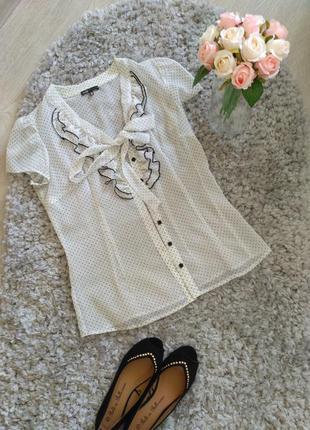 Прозрачная нарядная блузка