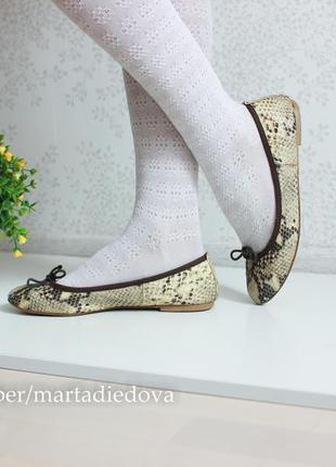 Кожаные балетки туфли мокасины, натуральная кожа змеи