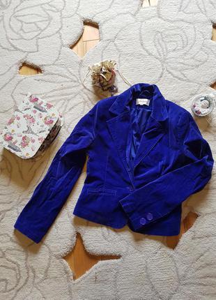 Синий велюровый укороченный пиджак от jennyfer!