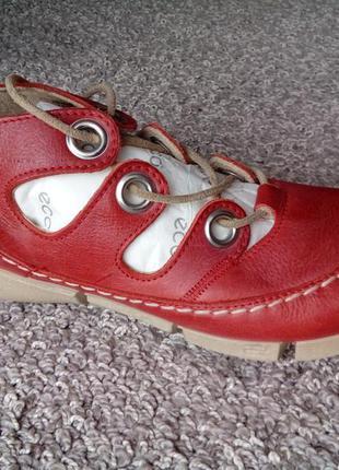 Дуже класні туфлі