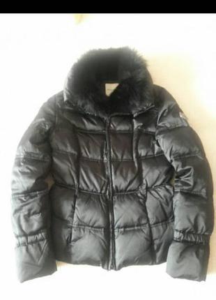 Куртка, пуховик phard