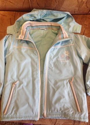 Деми куртка ветровка pocopiano