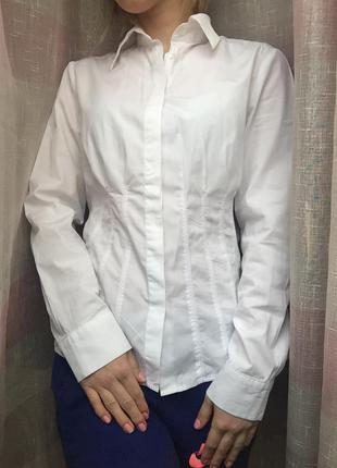 Рубашка roccobarocco