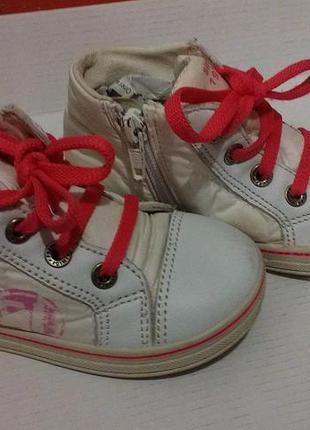 Кеды ботиночки primigi (примиджи)