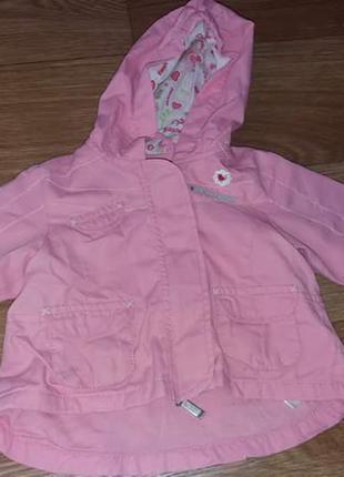 Легенькая курточка