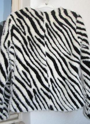 Шубка h&m зебра меховая куртка автоледи шуба размер s-m бренд