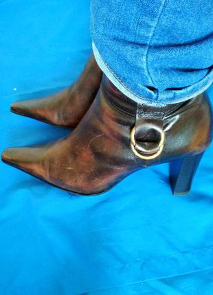 Скидка!кожаные полусапожки сапоги ботинки сапожки janet d 38р-р 24.5-25см