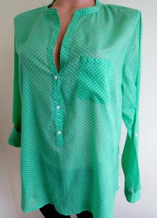 Рубашка gap p.l