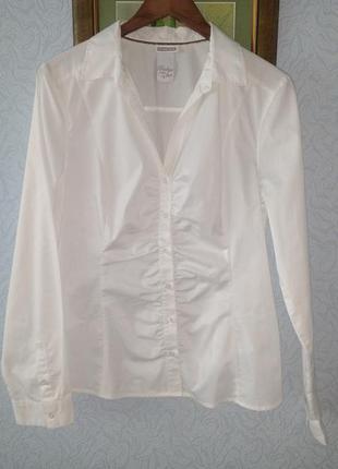 Лёгкая классическая блуза рубашка