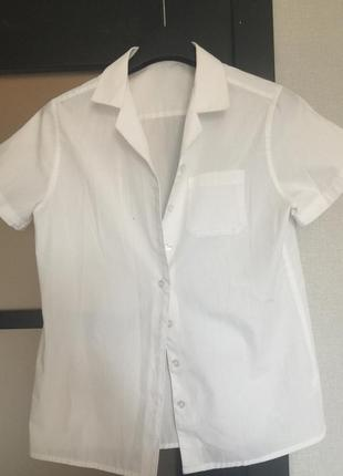 Белая блуза блузка с коротким рукавом